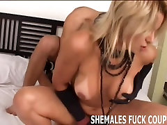 I want you to try some big hard shemale cock