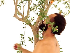 TREE - THERAPY - BIONIC NUDE DANCE