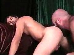 xvideos. dog vs girl hd xxx gay porn