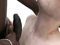 Gay Handjobs Party And Wet Blowjobs Tube FREE Video 27