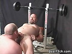On the weight bench gay bear love gay porn