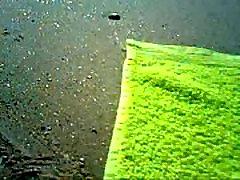 beach thonging