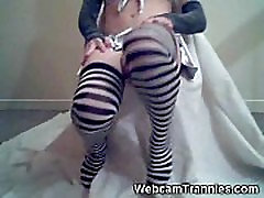 Shiny Shemale on Cam!
