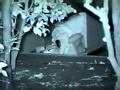 Voyeur films lovebirds having di ewe sampai terkencing kencing at night outside in clothing.