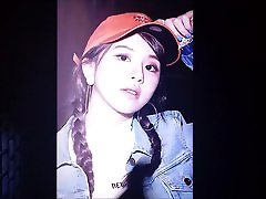 TWICE Chaeyoung javy nifty Tribute 4