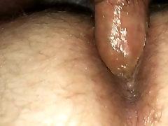 Hairy otter fucks tight fat bear hole