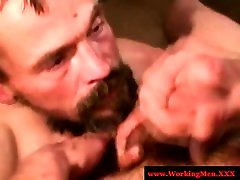 Hairy redneck begs for sticky jizz in his moustache