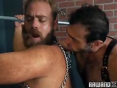 Bearded bear plowed doggystyle by hunk