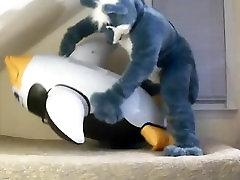 Husky Yiffs Penguin 2