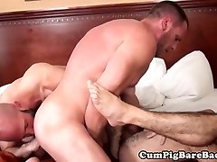 Bear spitroasted with bareback and blowjob
