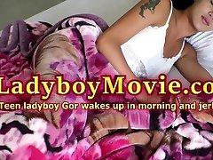 Big-Dicked Teen Ladyboy Gor Jerks Off