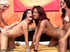 Lovely trannies fuck their asses deep in doggystyle foursome