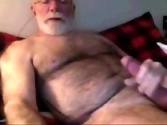 old hairy bear