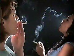 luštna kadilka, ki uživa v 120-ih