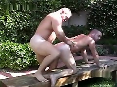 Beefy bears backdoor backyard fun