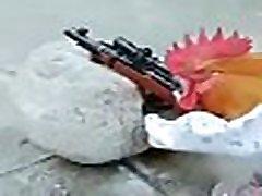 galo de combate sniper descendo o chumbo em lolicon