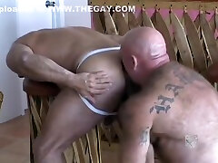 Bears getting each other off - Grey Rose Production