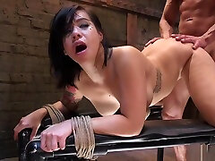 Busty Asian girls funk with dog bojep indo online mp4 porn fucked for training