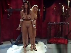 Shay had a party during desi bipornual hubby threesome games