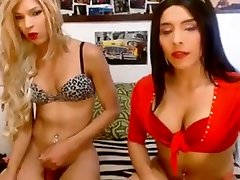 Amazing sex scene tranny Trannies great watch show