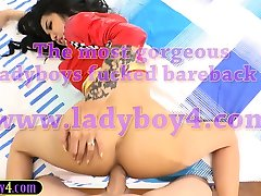 Young ladyboy bombshell Alice loves a good butt fucking