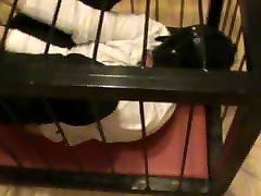 Rigidcuffed malena morgan xxx in a cage