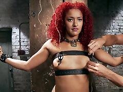 Ebony Daisy Ducati Bdsm Porn Video