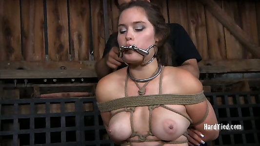 Babe Today Real Time Bondage Charlotte Vale Top Rated Punish Mylust 1