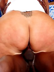 Tasha is a hip tattooed up BBW with a sexy round butt and a huge sex drive. She never turns down...