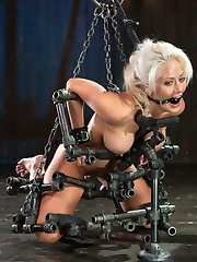 Holly is one of the hottest MILFs in the industry, as well as one of the toughest. This slut is...