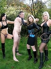 Triple Flogging
