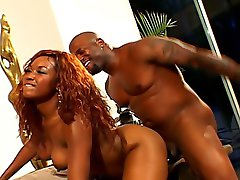 Mind-blowing doggystyle fucking with spicy ebony chick