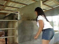Riding Asian pipe in the stables