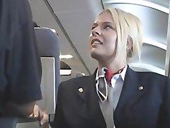 American stewardes fantasia