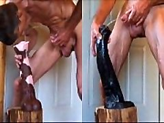 Stallion Lollipop and Fucking Big Horse Cocks Anal Extreme