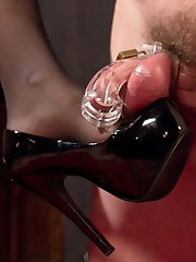 Artemis Faux has been a very bad boy, masturbating without the permission of the Divine Bitches, and it's up to the beautiful Aiden Starr to correct him. She immediately gags him, and slaps him in chastity and a cone of shame. With one grueling punishment after another, including plucking the hairs from his ass, pegging his fuck hole deep and hard, and caning him ruthlessly, she teaches this dog a lesson in self denial he will never forget. In the end Aiden torments his prostate as he wails for release, then uses him for her own explosive orgasm.
