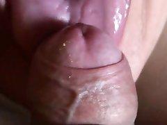 Swallow porn