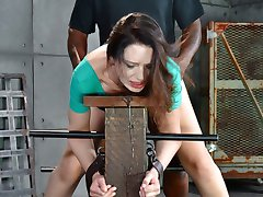 Sarah Shevon is the wholesome girl that you wish you lived next door to. Pretty, pale and tough...