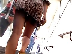 Animal instinct upskirt clip