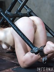 The chain was attached to the floor. The thick metal collar around my neck was locked. I was trapped. His tender caress and gentle kiss only made me more afraid of what he was going to do next.