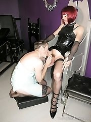 Desperate Housewife - The Sissy Cocksucker