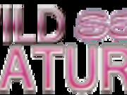 Mature Wild Sex