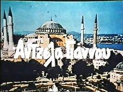 The Way To Harem - full movie