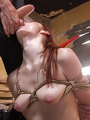 When Violet Monroe complains about the noise next door, the Machinist snatches the nosey...