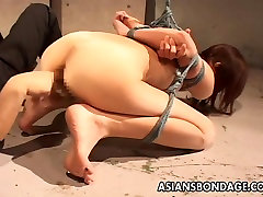 Slut is tied up bound and finger fucked real hard