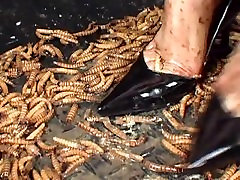 tickling with worms