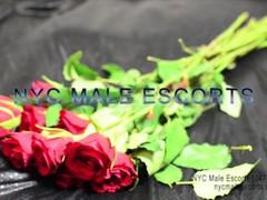 nyc male escorts