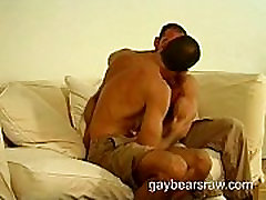 Gay bear Mark sucking big bear dick