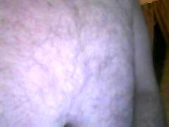 chubby bear jacking off