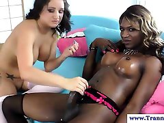 Ebony shemale tugging her cock